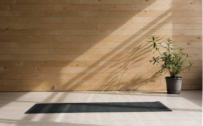 Protégé: Le souffle dans la posture de yoga (audio)