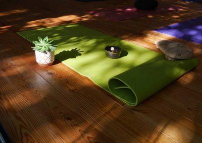 salle-yoga-tolosa-studio-yoga-toulouse-2